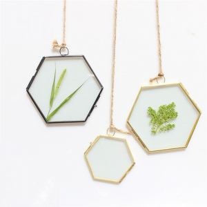 Cadre transparent hexagonal suspendu